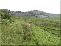 SH5645 : Uplands near Cwmystradllyn by Gareth James