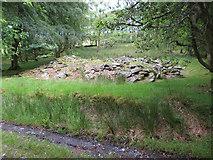 SH5645 : Building remains in Plas-llyn by Gareth James