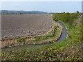 SJ1779 : Drainage ditch and farmland by Mat Fascione