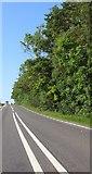 SP9055 : The A509, Warrington by David Howard