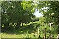 SS7229 : Fields by Stoneybridge Hill by Derek Harper