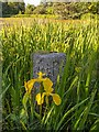 NJ2758 : Boundary Stone Blackhills by valenta