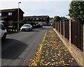 SO0328 : Autumn fallen leaves, Llanfaes, Brecon by Jaggery