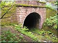 NS5569 : Tunnel Entrance by Barry Hunter