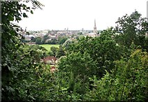 TG2308 : A view of Norwich Cathedral from Kett's Heights by Evelyn Simak