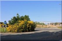 SP8667 : Roundabout on Park Farm Way, Wellingborough by David Howard