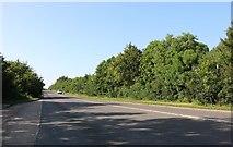 SP8869 : Wellingborough Road heading north by David Howard
