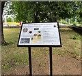 SJ9091 : Brunswick Wesleyan Chapel and Graveyard by Gerald England