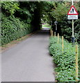 SY6783 : Caution - pedestrians, Station Approach, Upwey by Jaggery
