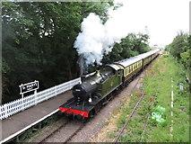 SO6302 : Dean Forest Railway at St Mary's Halt by Gareth James
