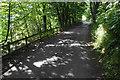 NY2525 : Lane to Millbeck by Bill Boaden