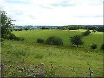 SE2547 : Castley Moor, Castley by Humphrey Bolton