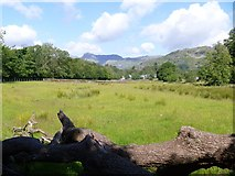 NY3304 : Elterwater to Skelwith Bridge [5] by Michael Dibb