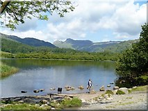 NY3304 : Elterwater to Skelwith Bridge [9] by Michael Dibb