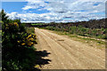 NJ1569 : Access road to Clashach Quarry by Mick Garratt