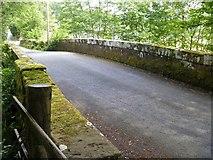NY3303 : Skelwith Bridge to Slater Bridge [17] by Michael Dibb