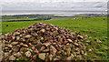NT6875 : Doon Hill and the Battle of Dunbar 1650 by Mick Garratt