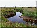 SN6863 : Afon Teifi meander on Cors Caron in Ceredigion by Roger  Kidd