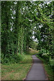 SO0660 : Path to the lake from Powys County Hall by Andrew Hill