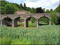 SJ6604 : Railway viaduct in Coalbrookdale by Philip Halling