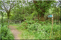 SS4301 : Entry to Cookworthy Forest by Guy Wareham
