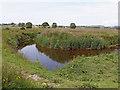 SN6864 : Afon Teifi meander on Cors Caron in Ceredigion by Roger  Kidd