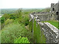 SN6121 : The south curtain wall above woodland, Dinefwr Castle by Humphrey Bolton