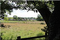 SD5273 : A walk along Kirkgate Lane (4) by Kate Jewell