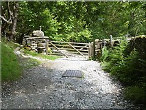 NY3204 : Track from Dale End to Elterwater [5] by Michael Dibb