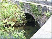 NY3204 : Elterwater Bridge [2] by Michael Dibb