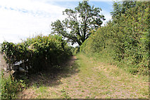 SD5273 : A walk along Kirkgate Lane: views from the highest point (12d) by Kate Jewell