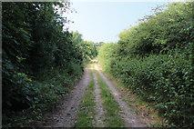 SD5273 : A walk along Kirkgate Lane (18) by Kate Jewell