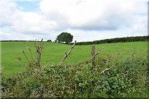 H4178 : Killinure Townland by Kenneth  Allen