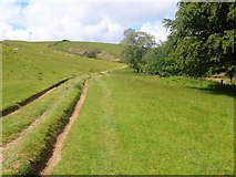 NY2825 : The ascent to Latrigg [21] by Michael Dibb