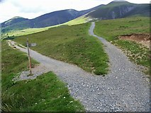 NY2725 : The descent from Latrigg [3] by Michael Dibb