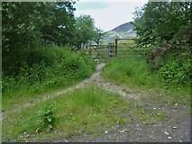 NY2724 : Path leaves the bridleway by Michael Dibb