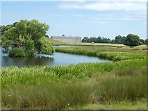SU9622 : The Upper Pond, Petworth Park, with the house beyond by David Smith