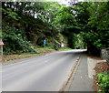 SN3040 : A484 from Newcastle Emlyn towards Cenarth by Jaggery