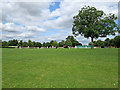 TL6669 : Chippenham: a view from the boundary by John Sutton