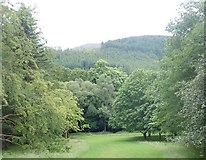 J3432 : Parkland above the Shimna at Tollymore Forest Park by Eric Jones