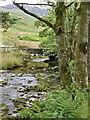NY1915 : Gatesgarthdale Beck at Gatesgarth Farm by Graham Hogg