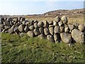NM3223 : Drystane dyke, Airighglas by Richard Webb