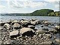NY4624 : Ullswater foreshore by Graham Hogg