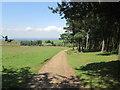 SJ9681 : The Gritstone Trail towards Lyme Hall by John Slater