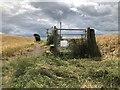 NZ3231 : Stile and Gate, Bishop Middleham by David Robinson
