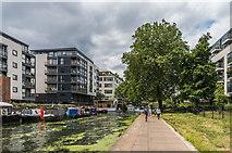 TQ3283 : Alongside Regent's Canal by Ian Capper