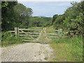 NZ8114 : Private track into the Mulgrave estate. by steven ruffles