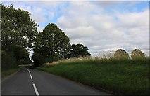 TL3829 : Hare Street Road by David Howard