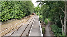 SO6302 : Train tracks at St Mary's Halt by Helen Steed