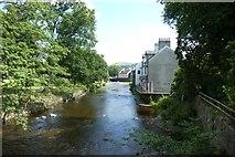 NY2623 : Upstream on the Greta by DS Pugh